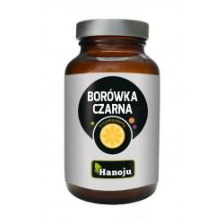 Borówka Czarna ekstrakt 25% 450mg 90 kapsułek